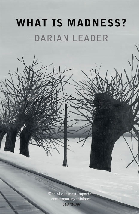 Darian Leader, What is Madness?[link]/current/darian-leader.html[/link]